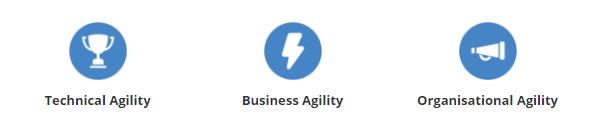 agile-summit-icons